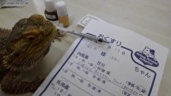 花子ちゃんと薬の画像
